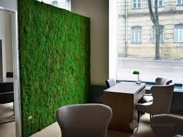 Soundproofing Pictures by Soundproofing Walls With Moss Gaja Decor Group