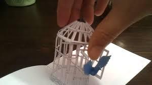 pop up birdcage youtube