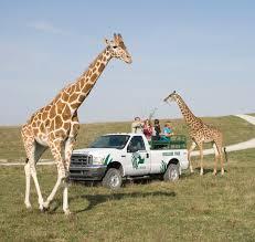 Ohio wildlife tours images Ohio the wilds travel 50 states with kids jpg