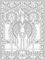 bird coloring pages for adults chuckbutt com
