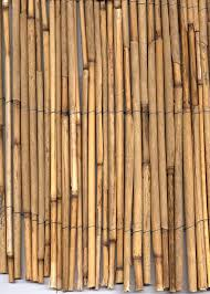 Bamboo Fencing Rolls Home Depot by Outdoor Bamboo Screens Bamboo Fence Roll Reed Fencing Rolls