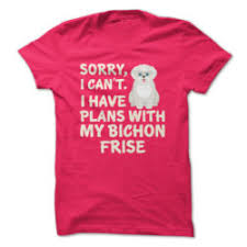 bichon frise vs yorkie how bad do bichon frises how or bark advice from real bichon