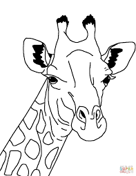 giraffe face coloring page free printable coloring pages