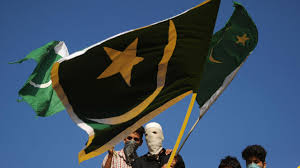 Pakistans Flag Man Detained For Hoisting Pakistani Flag In Rajasthan
