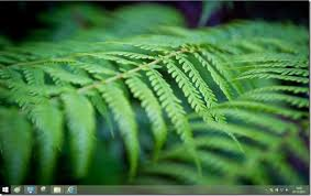 wallpaper hp windows 8 how to disable or stop desktop background wallpaper syncing in