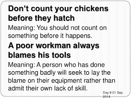 Never Count Your Chicken Before They Hatch Proverbs 1