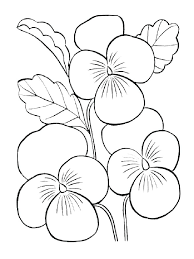 coloring pictures of hibiscus flowers hibiscus coloring pages hibiscus flower coloring pages hibiscus