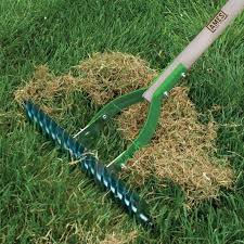 the home depot spring black friday 2014 best 25 thatching rake ideas on pinterest lawn feed lawn