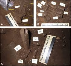 geological and taphonomic context for the new hominin species homo