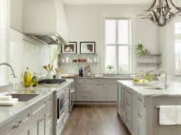 Light Grey Kitchen Cabinet Houzz - Gray kitchen cabinets