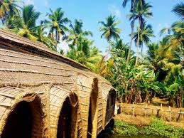 Houseboat Rentals Los Angeles Sleeping On Houseboats In The Backwaters Of Kerala India