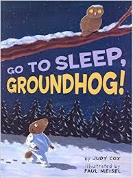 sleep groundhog judy paul meisel 9780823418749