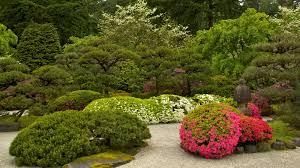 portland japanese garden pictures view photos u0026 images of
