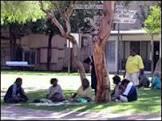 BBCBrasil.com | Reporter BBC | ' Lei seca' leva aborígenes ...