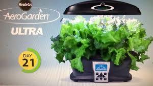 amazon miracle gro aerogarden ultra indoor garden with gourmet