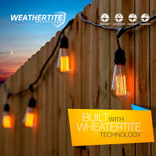 Edison Bulb Patio String Lights Brightech Store Ambience Pro Vintage Edition With Weathertite