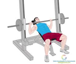 Decline Smith Machine Bench Press Workouts To Lose Chest Fat Best 5 Recommended By Experts