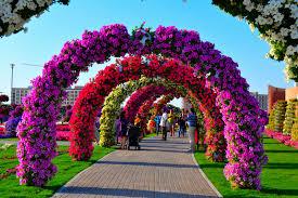 82 garden images dumbarton oaks gardens 45 million blooms