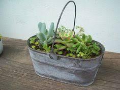 roundup 8 best places to buy garden pots garden pots planters