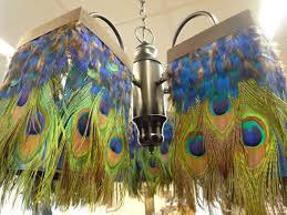parrot decorations home room design ideas best to parrot