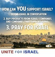 Israel Memes - how can you support israel 1 defend israel in conversation 2 buy