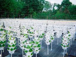 commercial growing ezgro garden