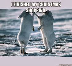 Christmas Shopping Meme - animals and christmas funny animal meme collection 14 pictures