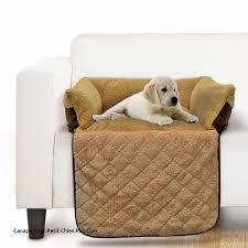 canapé pour chien grande taille canape pour petit chien pas cher loverossia com