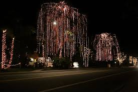 oceanside holiday decorations and displays