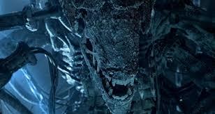 monsters vs aliens halloween special why u0027alien vs predator u0027 deserves all your love bloody disgusting