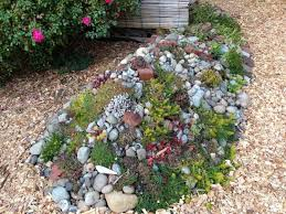 steingarten bepflanzen anleitung loveer garten