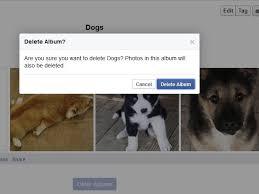 dog photo albums how to delete photo albums in techwalla