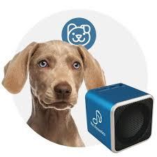 calming collar pet acoustics bluetooth speakers calming canine