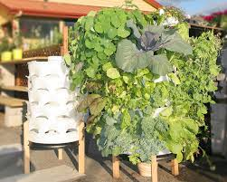 21 amazing ideas to build your own tower garden