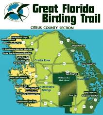 Florida Coast Map Great Florida Birding Trail Citrus County Section Birding