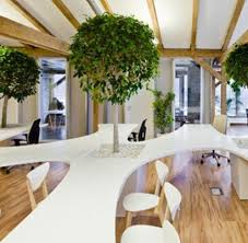 office building uses trees and potted plants to keep the