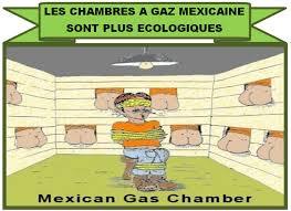 gaz chambre à gaz david cole explose le mensonge de la chambre à gaz à auchwitz