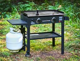Backyard Classics 2 In 1 Tailgate Grill by Blackstone 2 Burner Propane Gas Grill With Side Shelves U0026 Reviews