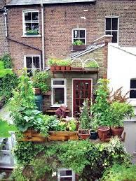 urban vegetable gardening u2013 exhort me