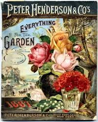 vintage seed packets some like it pretty pretty vintage seed packets and more diy