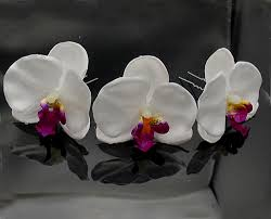 White Orchid Flower Party Deco Picture More Detailed Picture About 30px 2 8