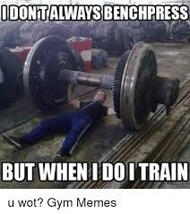Wot Meme - idonitalways benchpress but when doitrain u wot gym memes gym