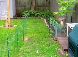 backyard dog run ideas outdoor goods gogo papa
