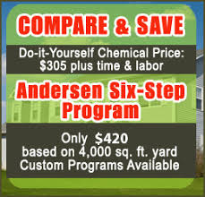 lawn care programs for do it yourself lawn spraying and lubbock tx andersen landscape