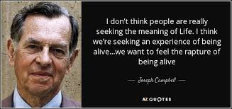 Seeking Meaning Joseph Cbell Quote I Don T Think Are Really Seeking The