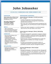 It Professional Resume Sample by Professional Letter Format It Professional Cover Letter Sample