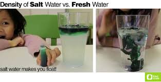 density of salt water vs fresh water ocean experiment cc cycle 3