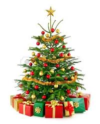 studio closeup of a christmas tree decorated with red and gold