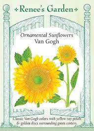 gogh ornamental sunflowers renee s garden seeds