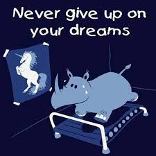 In Your Dreams Meme - never give up on your dreams my incredible website